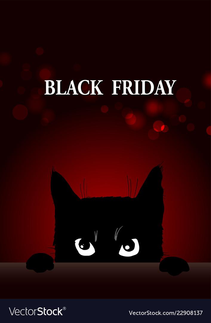 Картинки черная пятница с котом