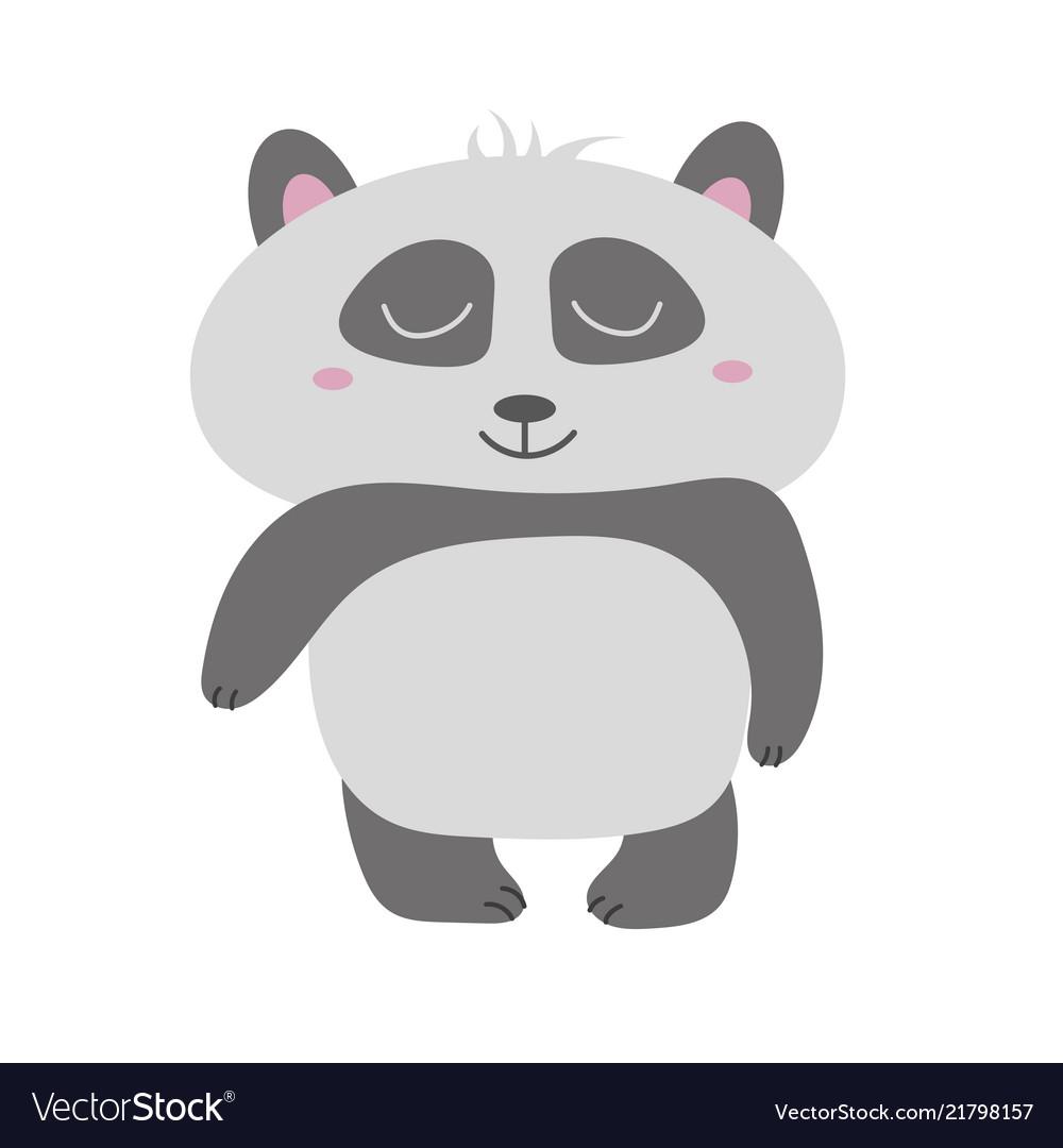 Cute panda bear animal
