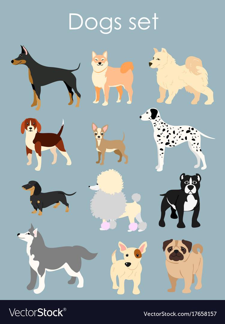 Different type of cartoon vector image