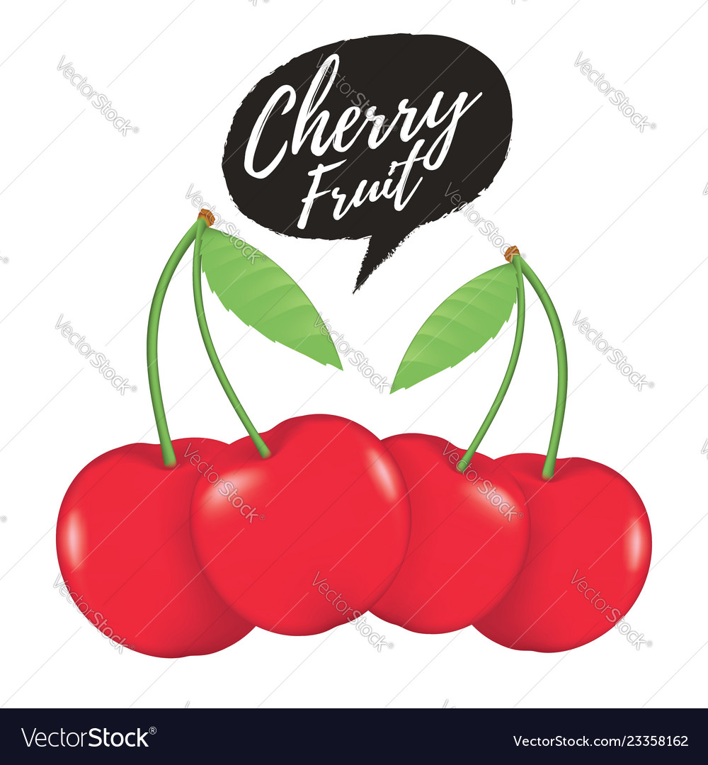 Cherry realistic fruit