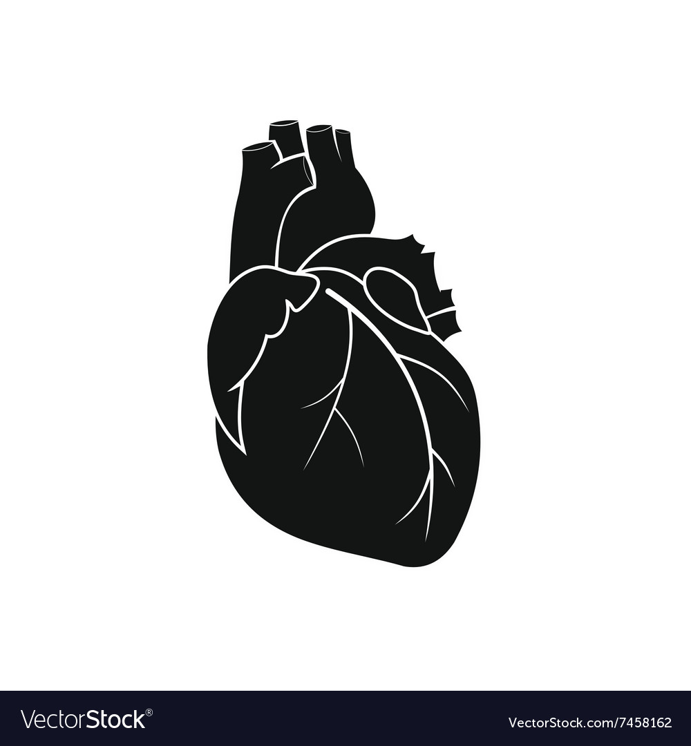 Human Heart Images Black And White