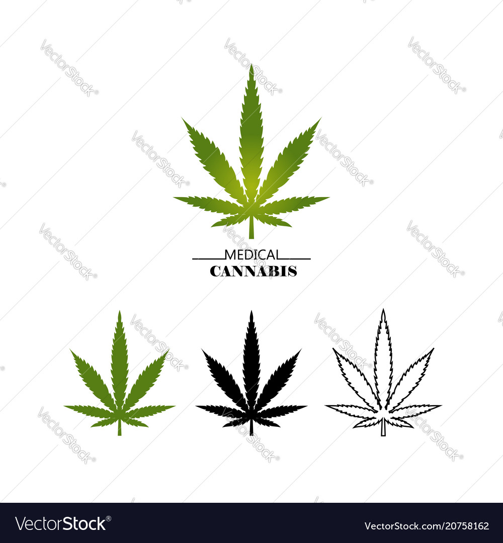 Set different logo marijuana leaves isolated on vector image