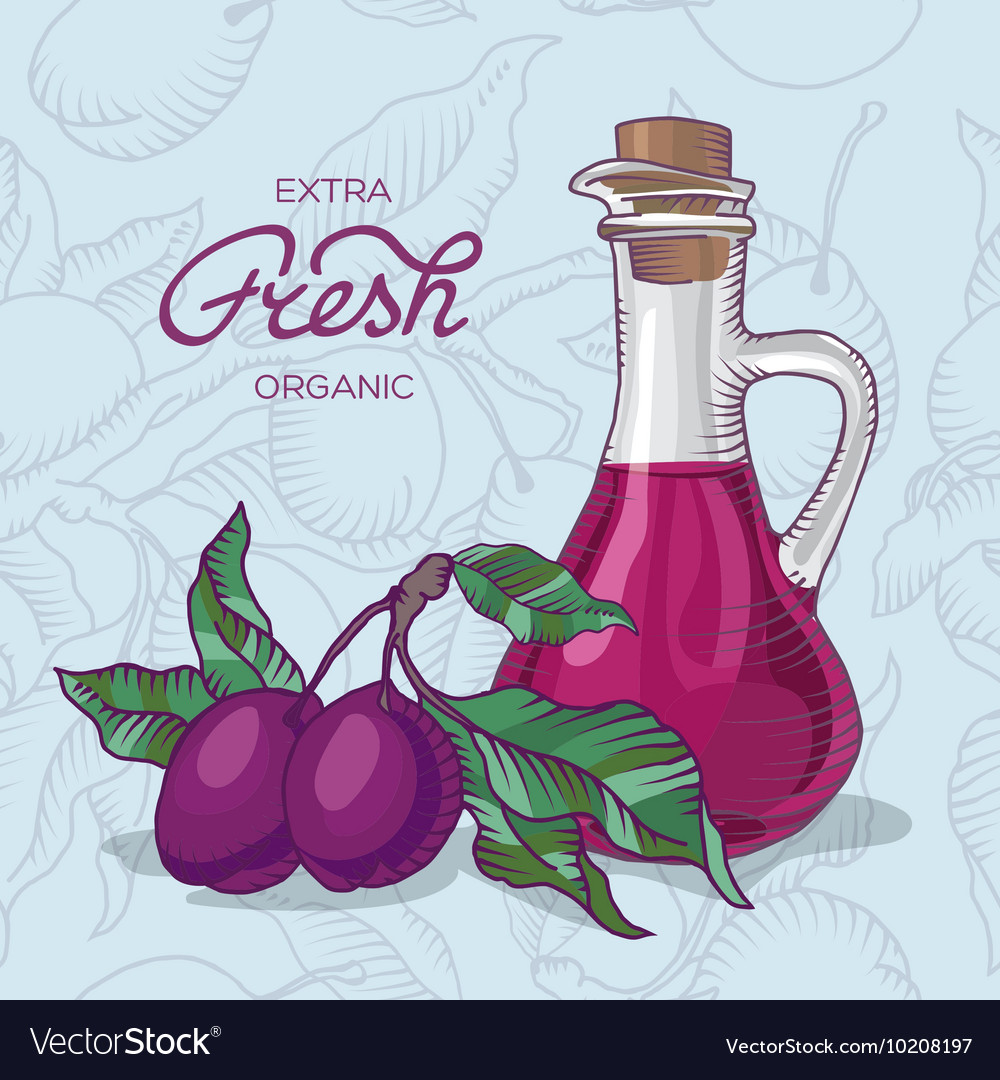 Plum branch with fruit and carafe of juice vector image