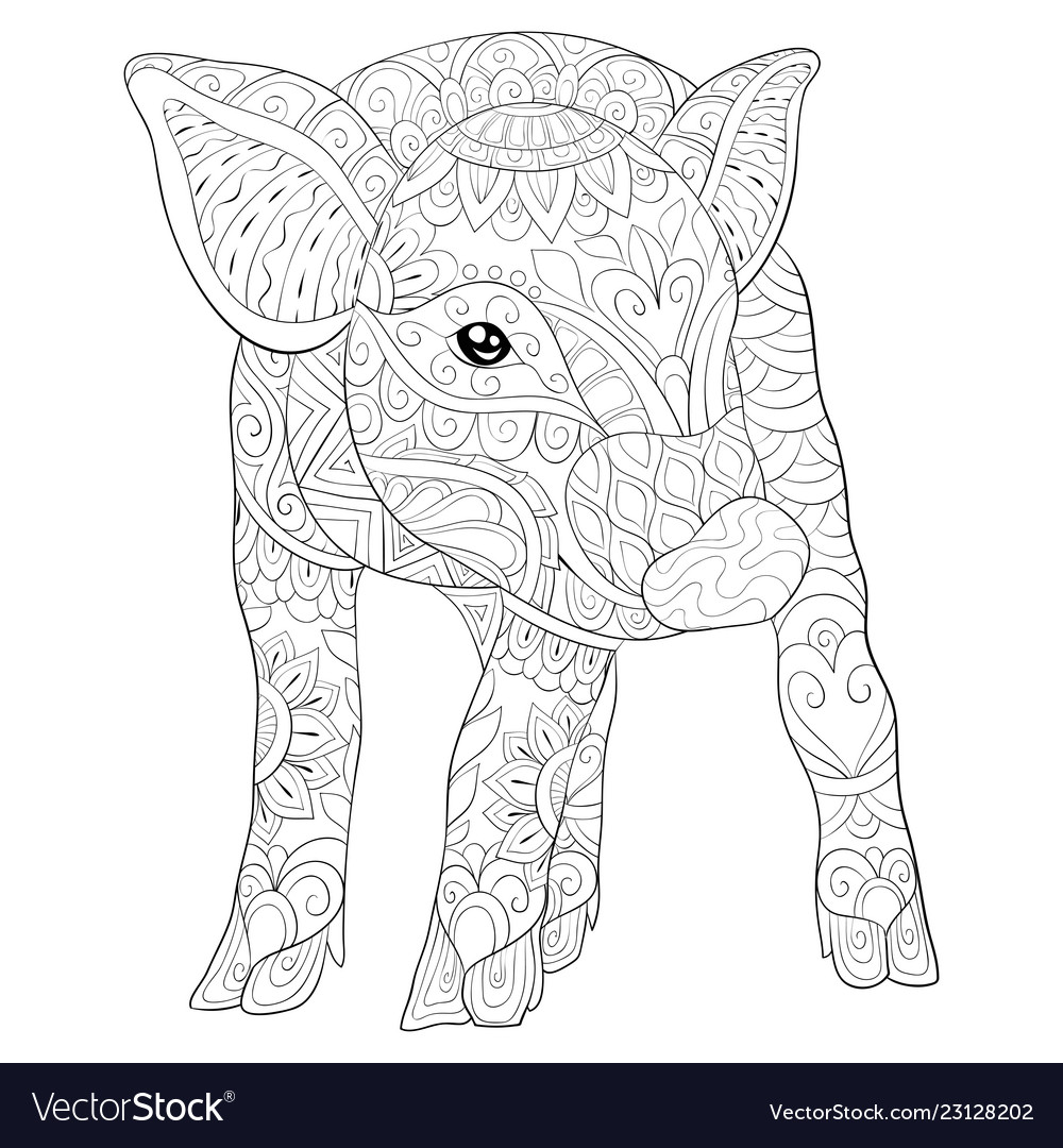 Adult coloring book page a cute pig image for