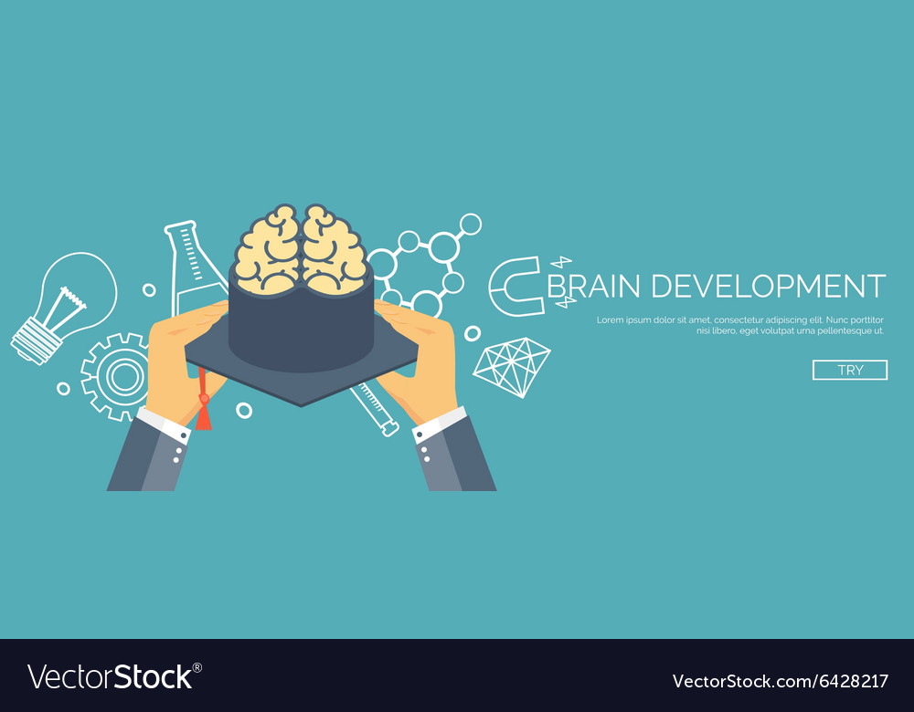 Brains and academic cap vector image