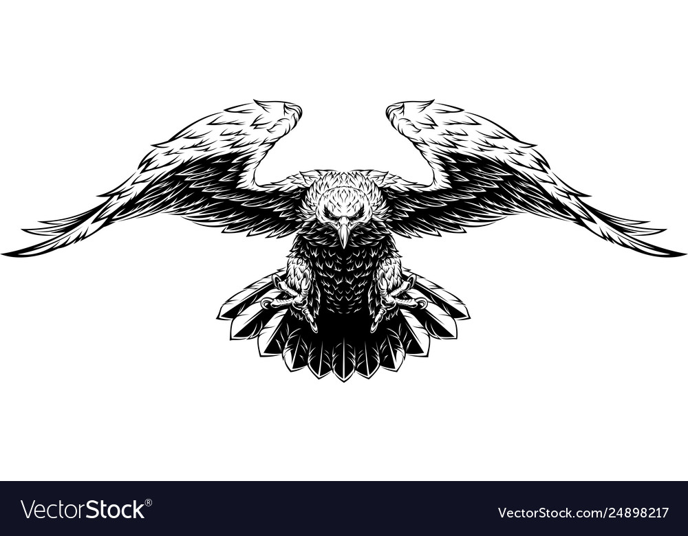 Flying big eagle
