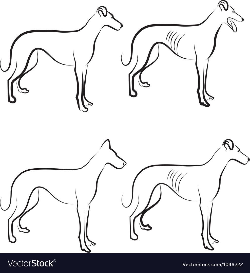 Greyhound dogs logo