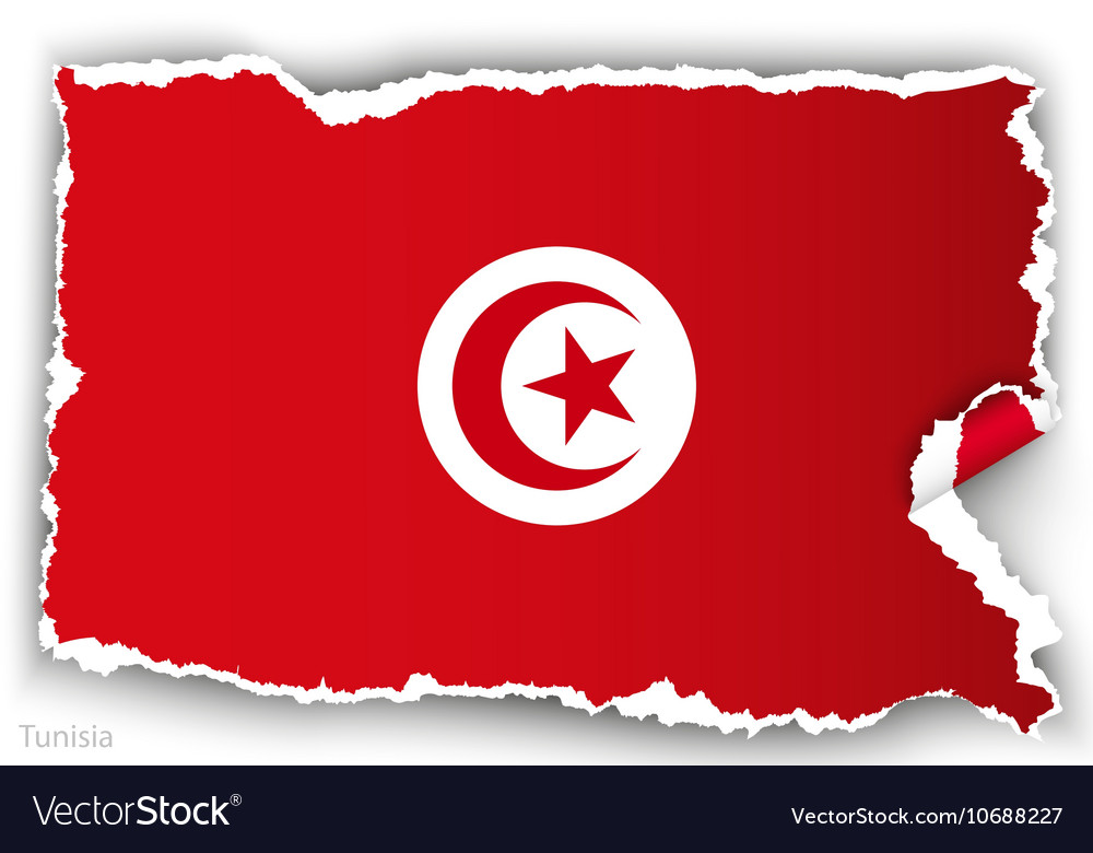 Design flag tunisia from torn papers with shadows