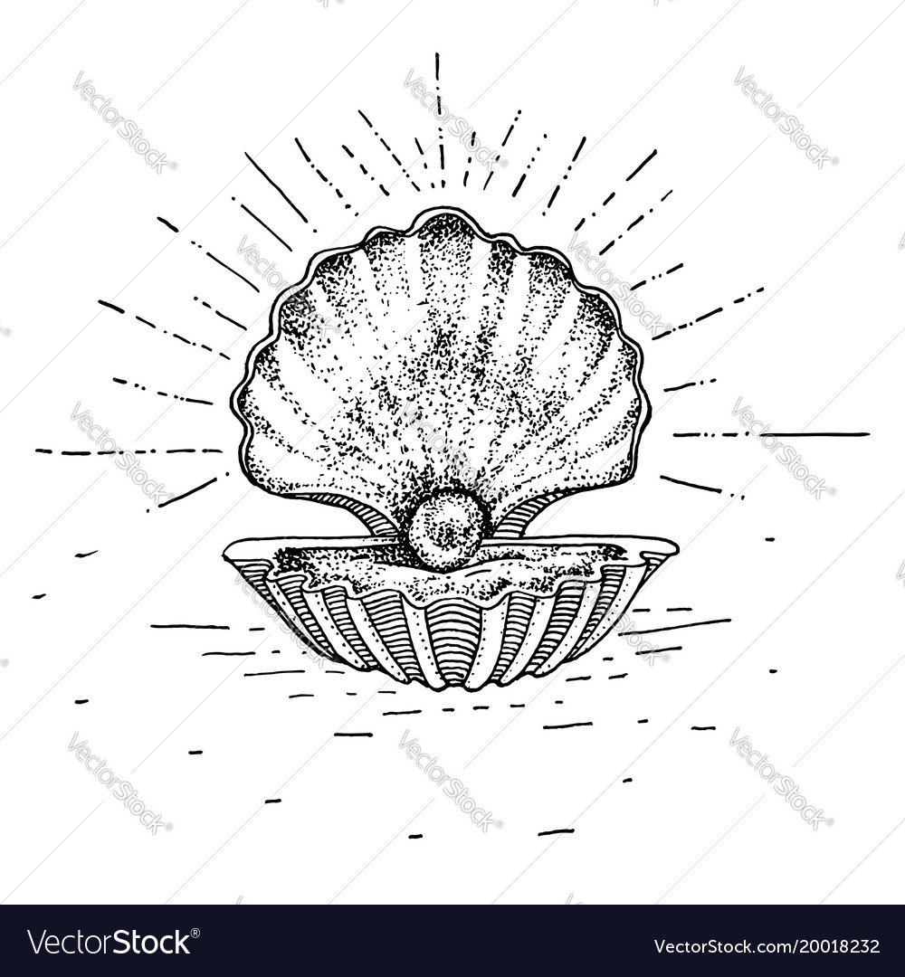 Hand Drawn Sink With A Pearl Tattoo Theme Vector Image