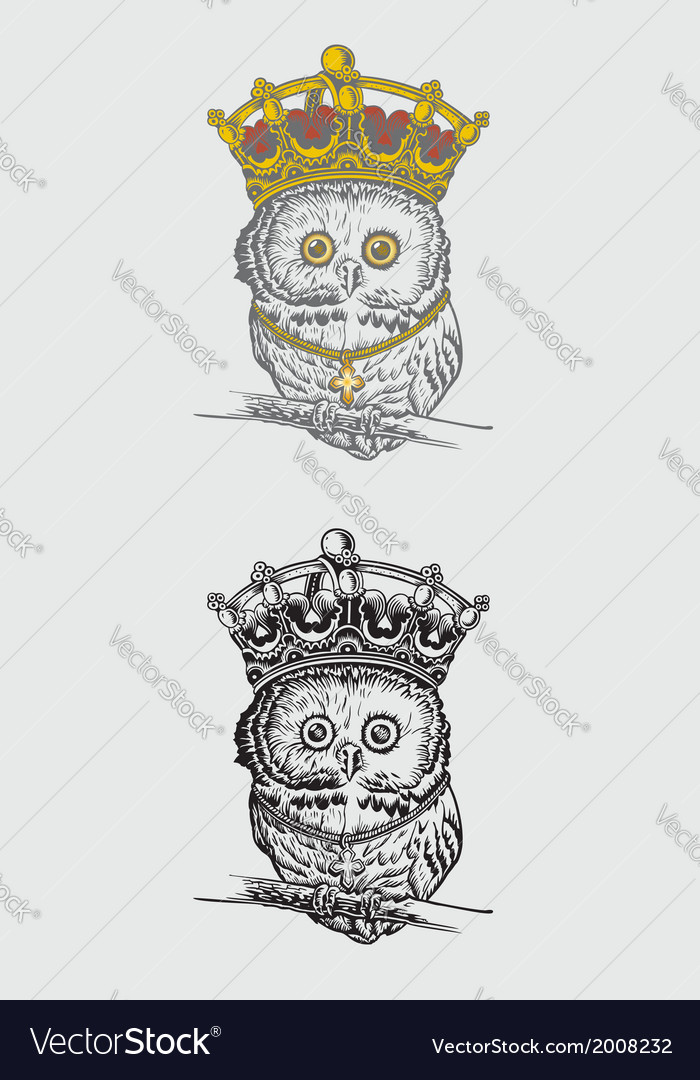The King Owl Drawing vector image