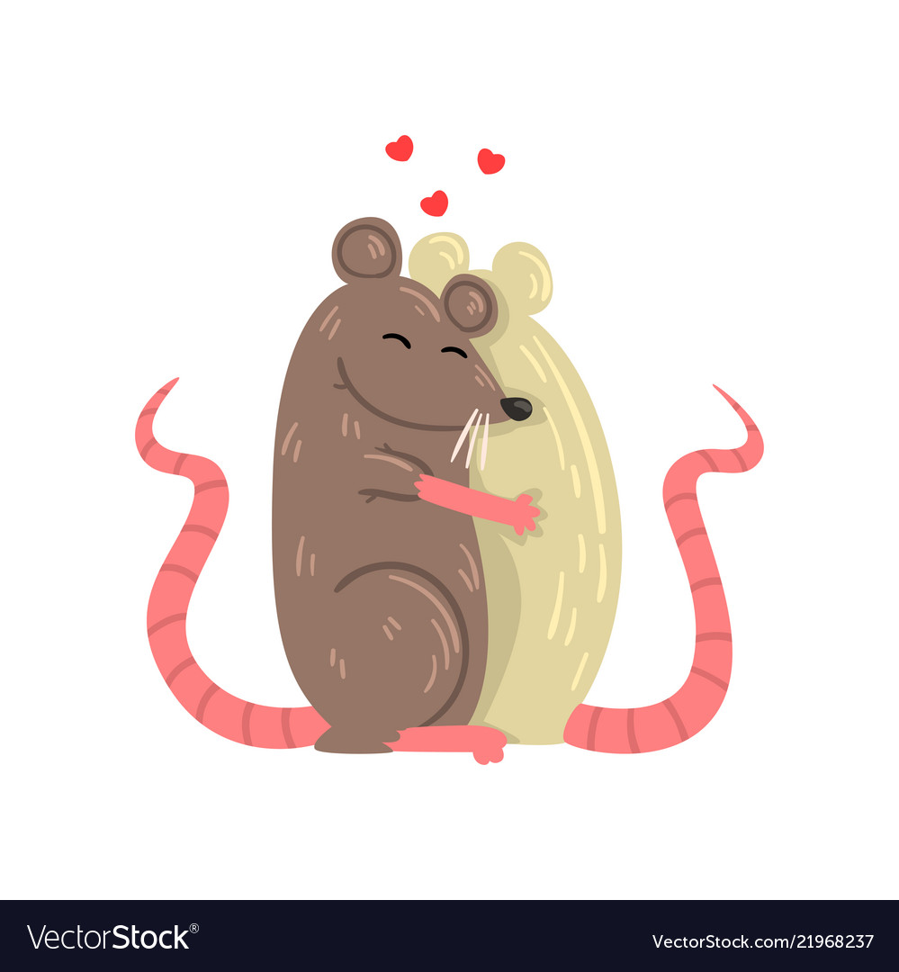 Couple of mice in love embracing each other two