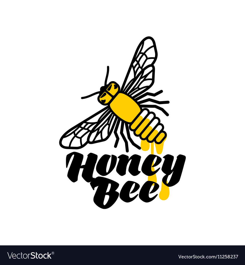 hand drawn bee logo for honey products royalty free vector rh vectorstock com honey bee look like honey bee ligonier pa