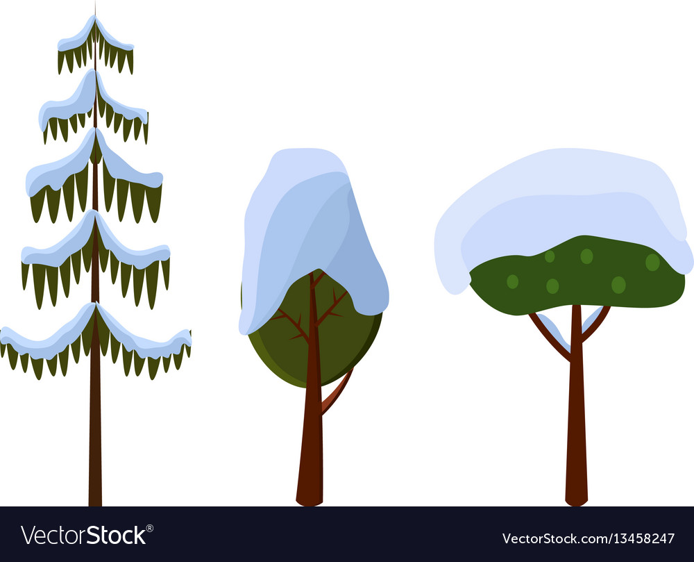 tree evergreen trees covered with snow winter vector image rh vectorstock com vector trees outline vector trees top view