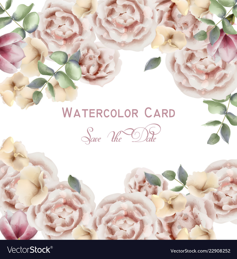 Delicate pink roses watercolor background