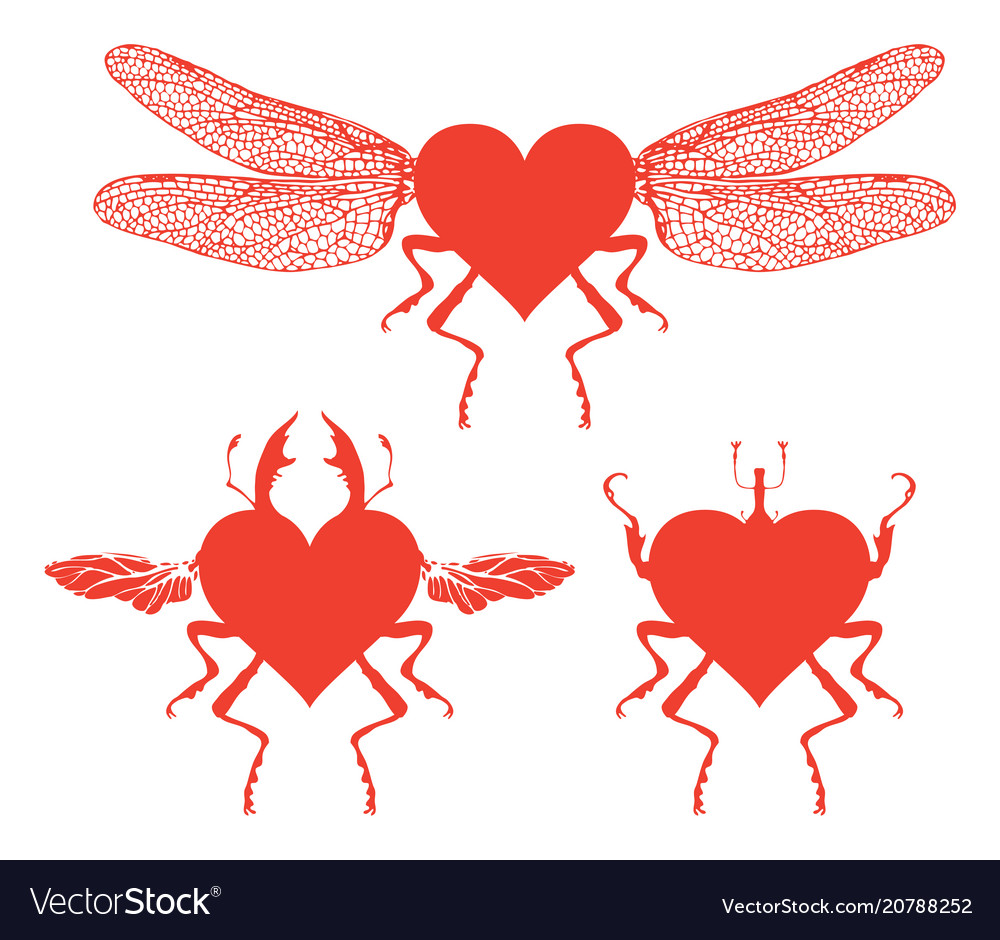 Red dragonfly with abstract flying heart