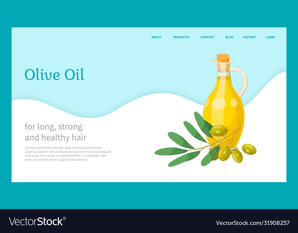 Hair Olive Oil Natural Cosmetics Organic Essence Vector Image