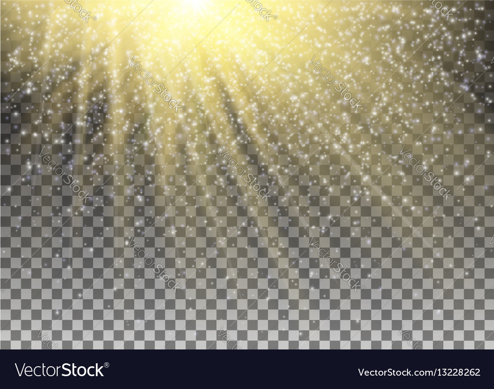 Glowing light effect on transparent background vector image