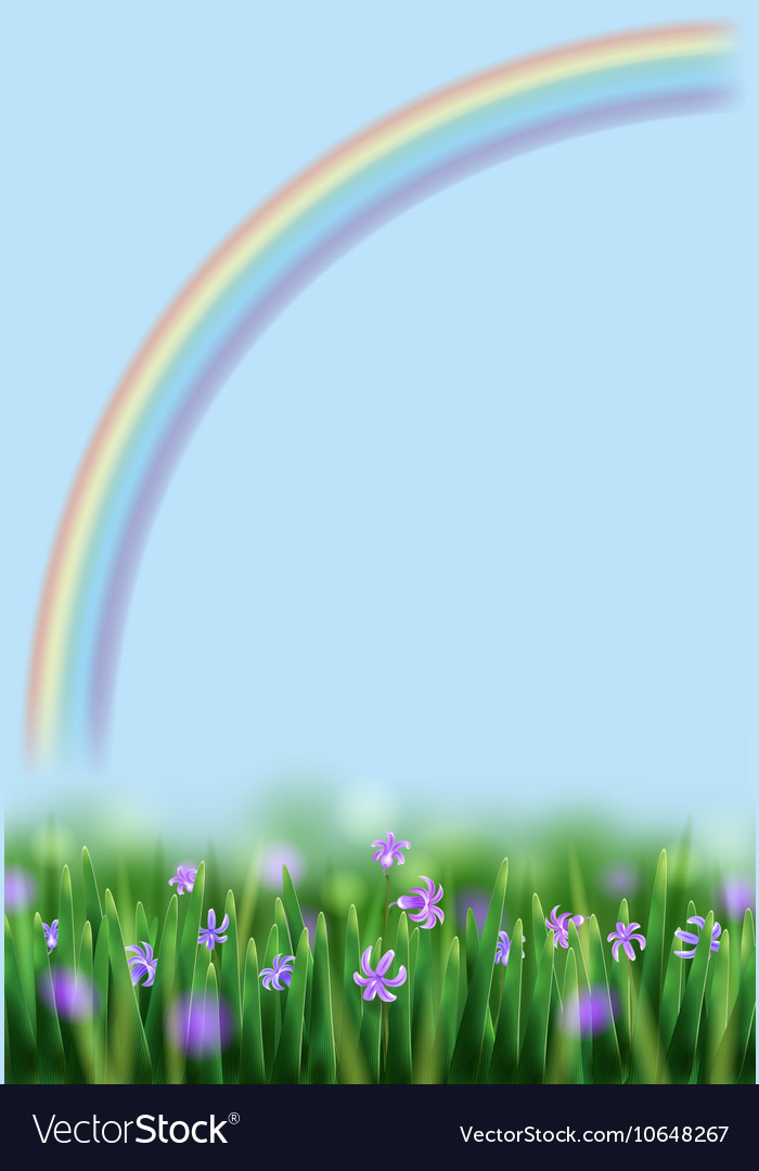Flowers and Rainbow