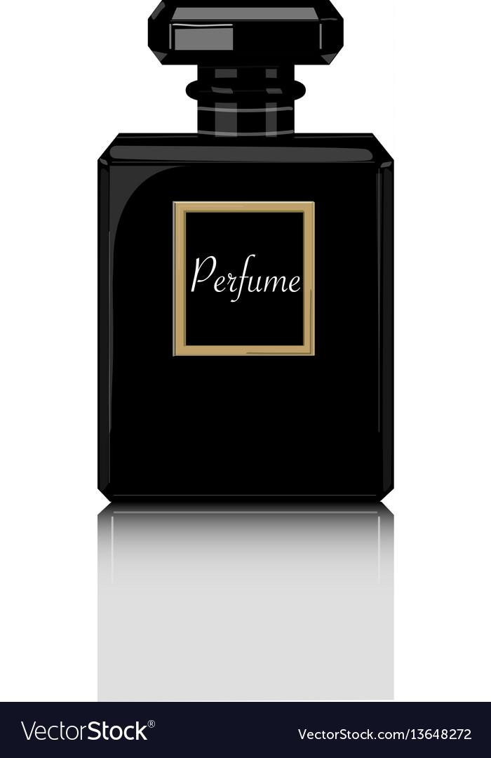 Perfume print black bottle haute couture vector image