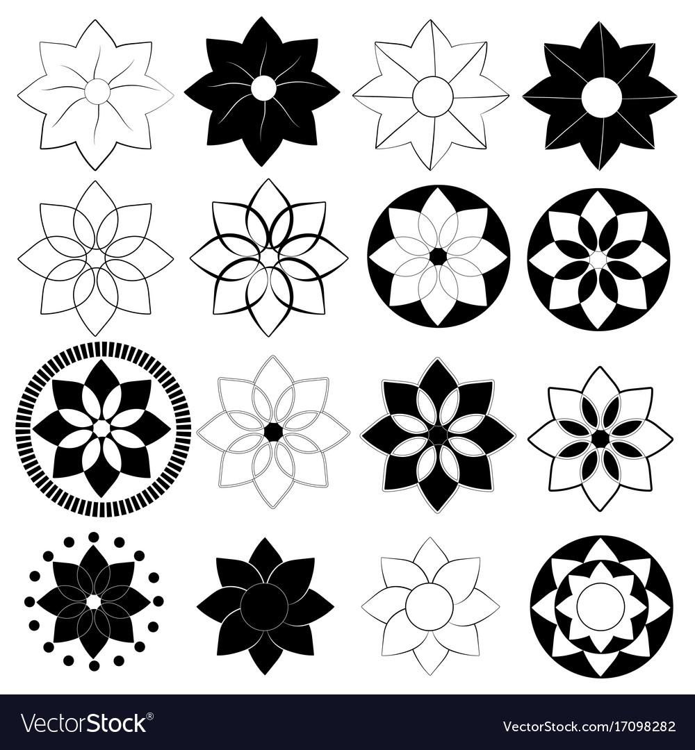 Black and white flower pack