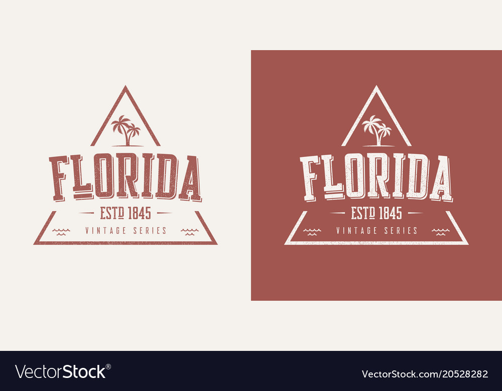 Florida state textured vintage t-shirt and