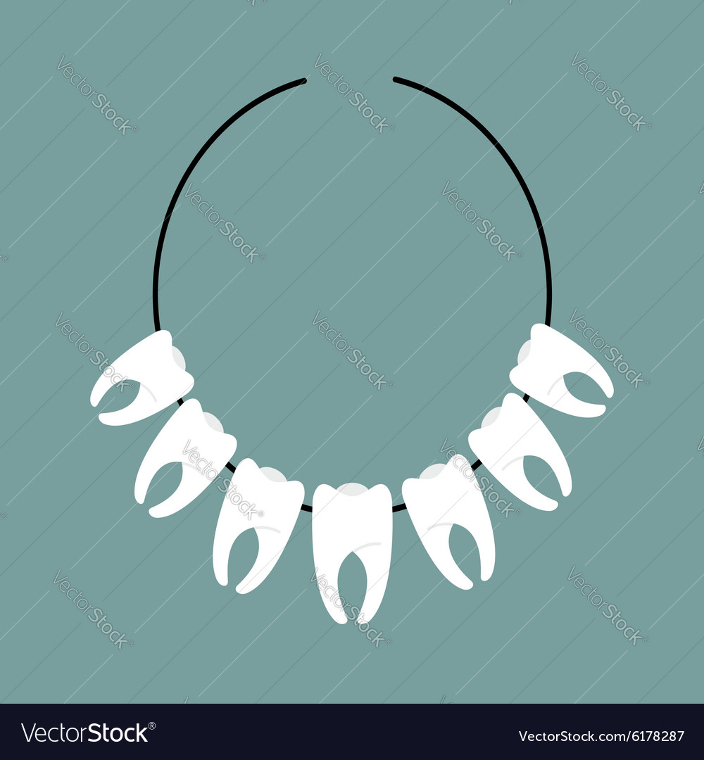 Necklace of teeth Decoration on neck of Indians vector image
