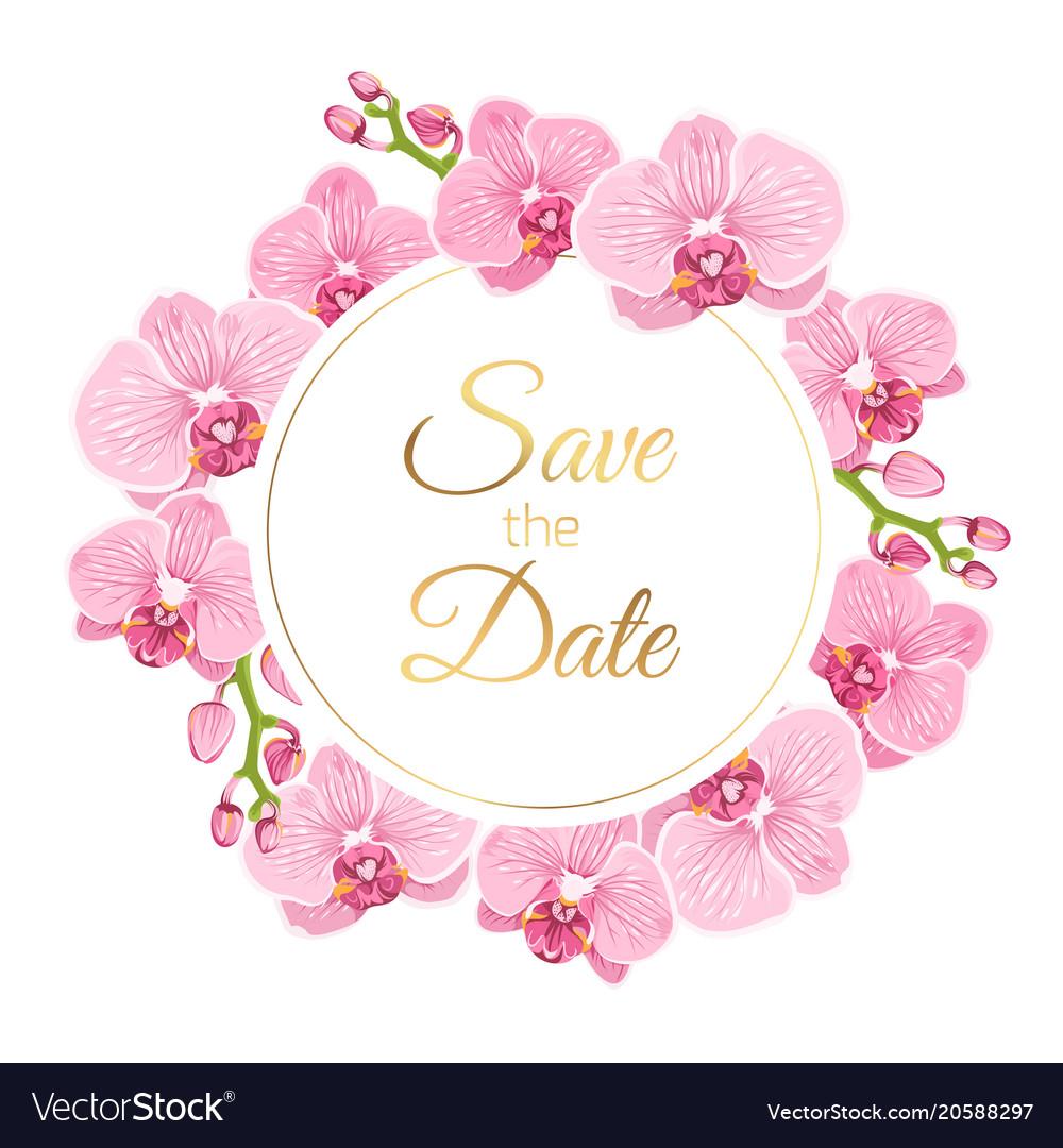 Orchid phalaenopsis floral wreath wedding invite Vector Image