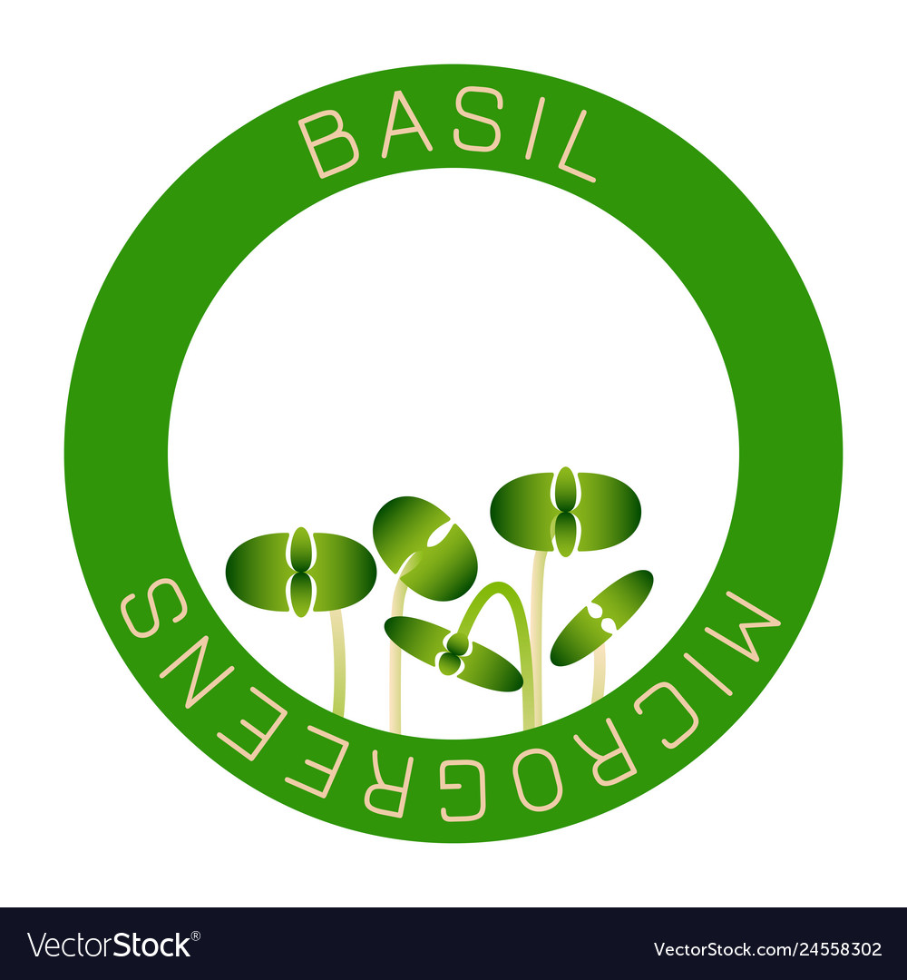 Microgreens Basil Seed Packaging Design Round Vector Image