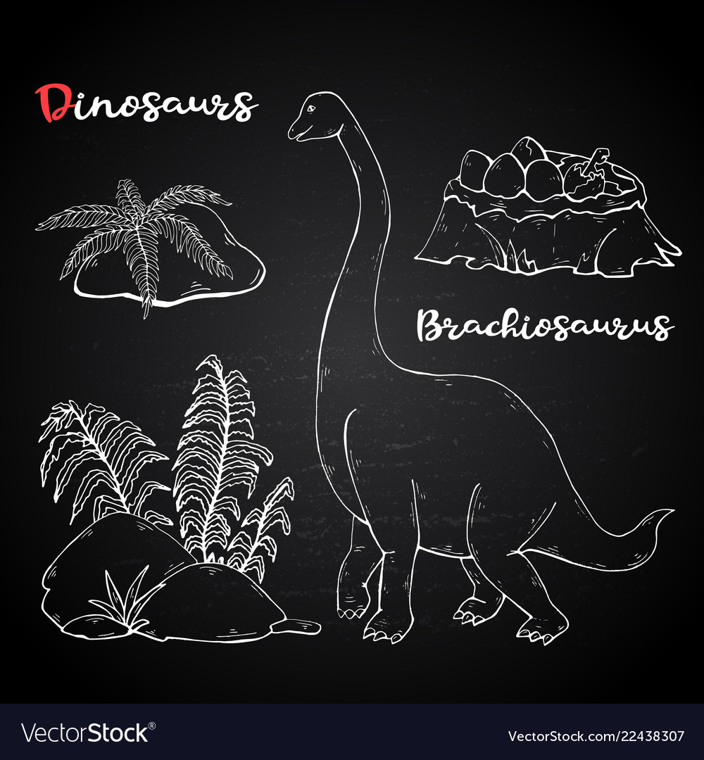Brachiosaurus with plant and stone on chalk