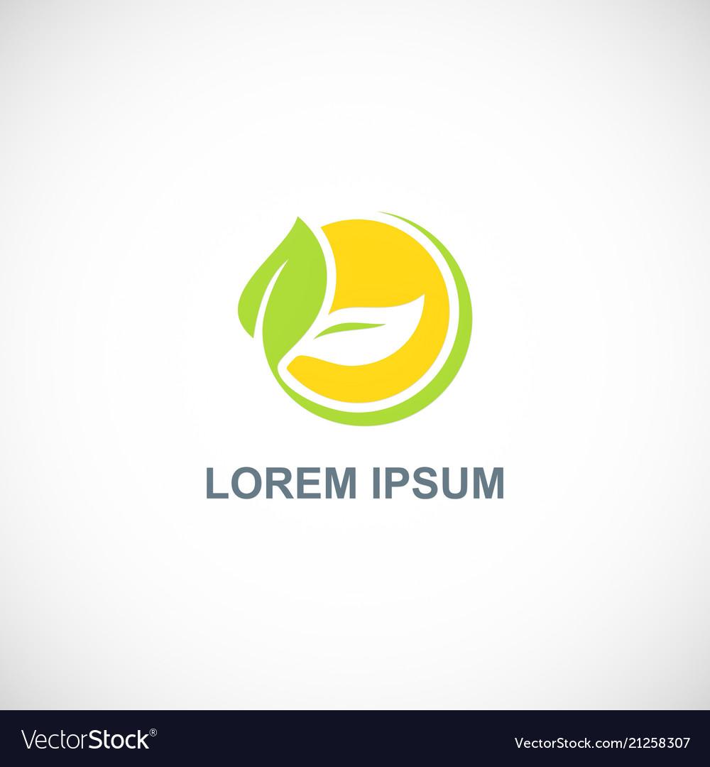 Ecology green leaf organic logo