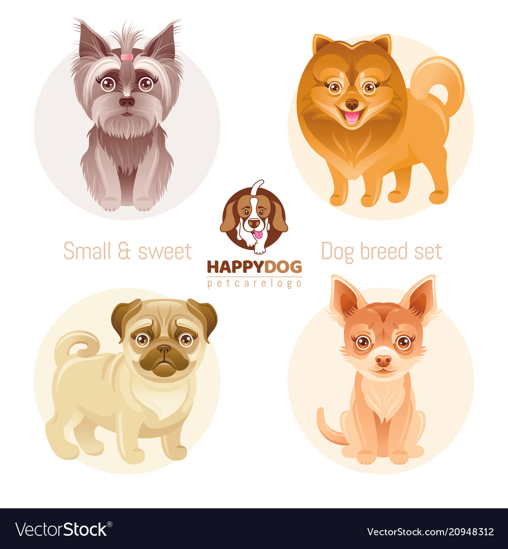 Puppy dog breeds icon set yorkshire terrier