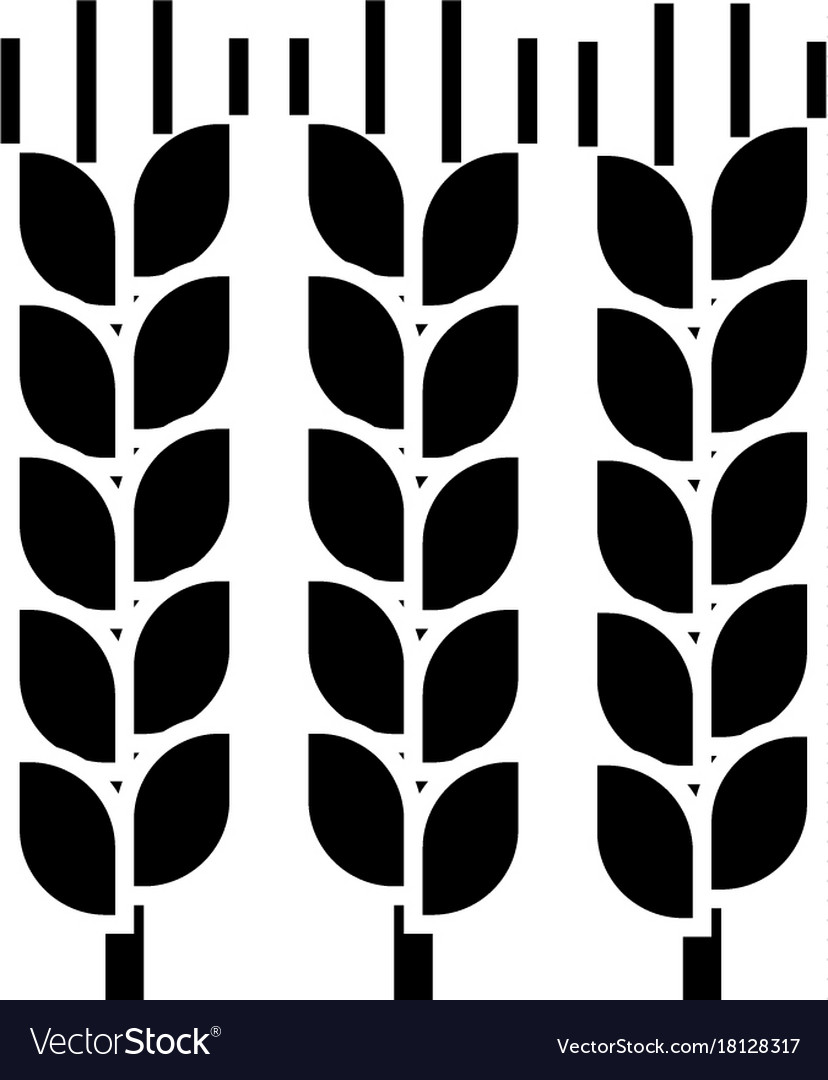 Wheat icon sign on isolate
