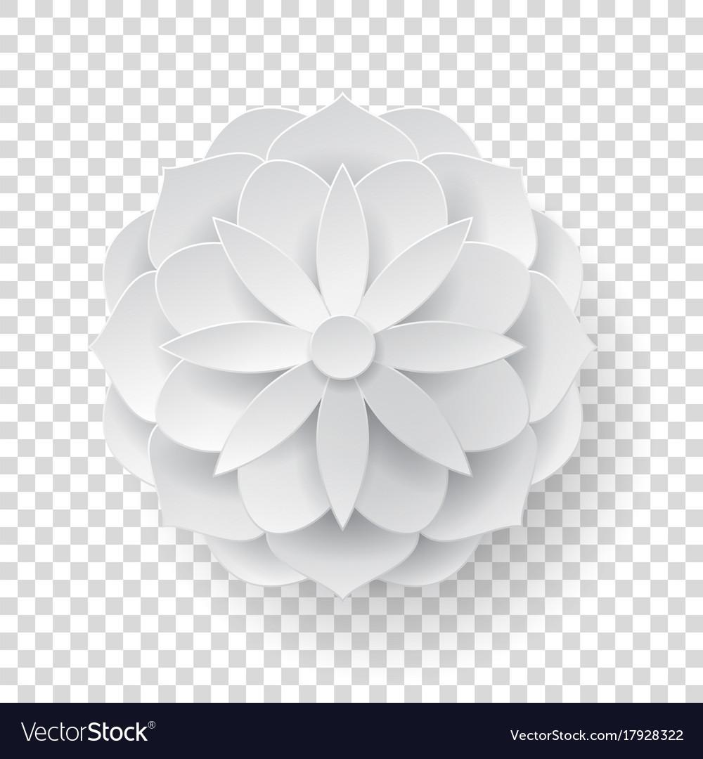 Paper volume flower transparent background vector image mightylinksfo