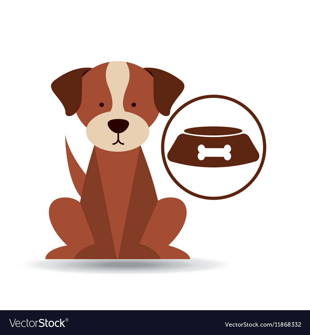 Veterinary dog care bowl of dog food icon