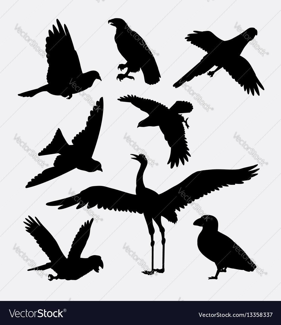Bird activity silhouette