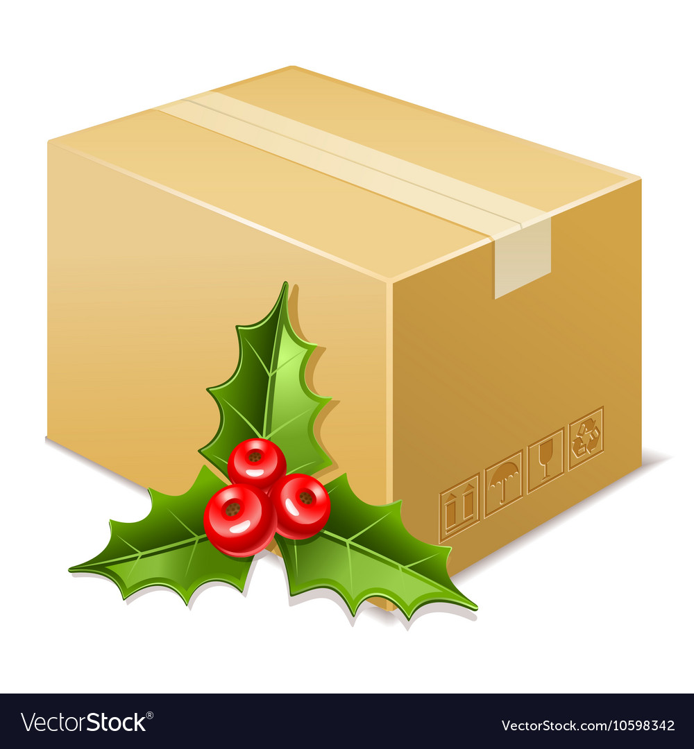 Christmas box icon Mistletoe vector image