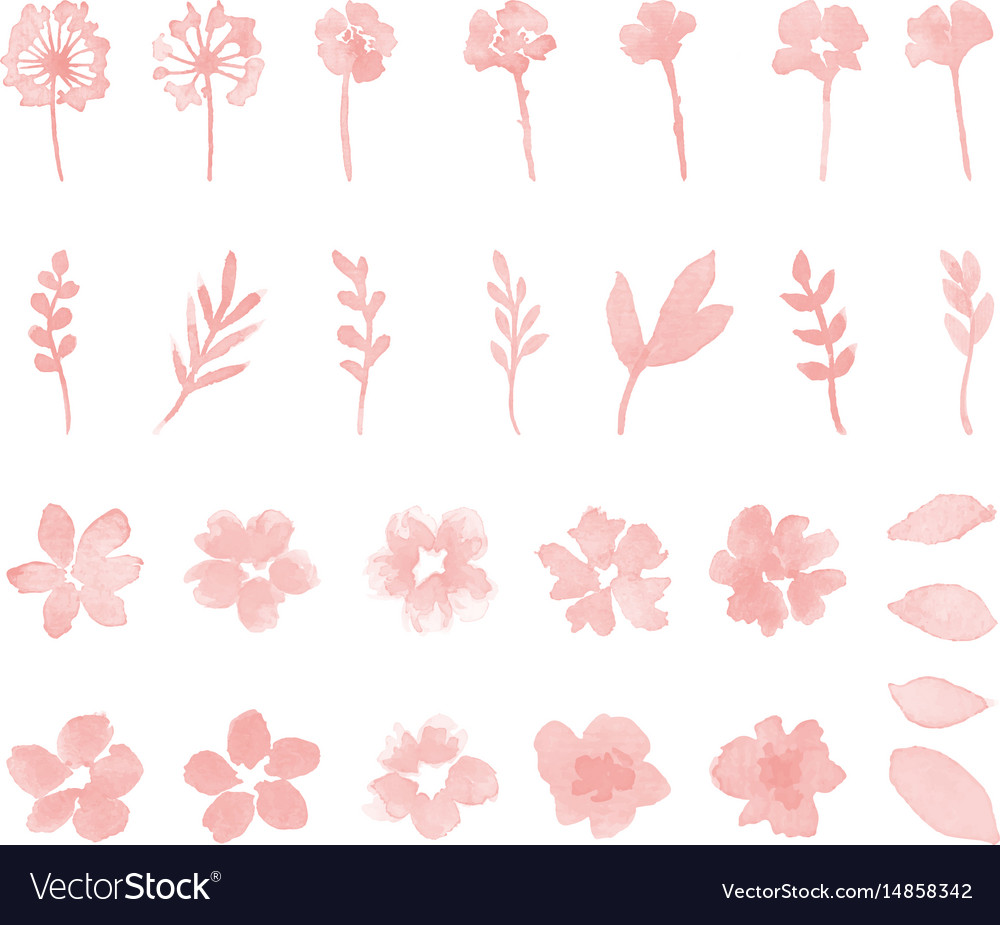Decorative flower watercolor design elements