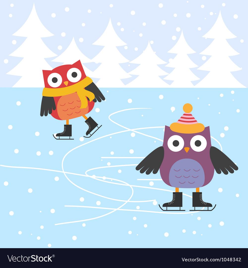 Ice skating cute owls vector image