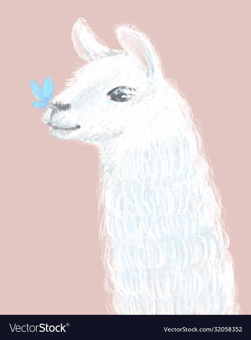 Cute and fluffy llama hand drawn