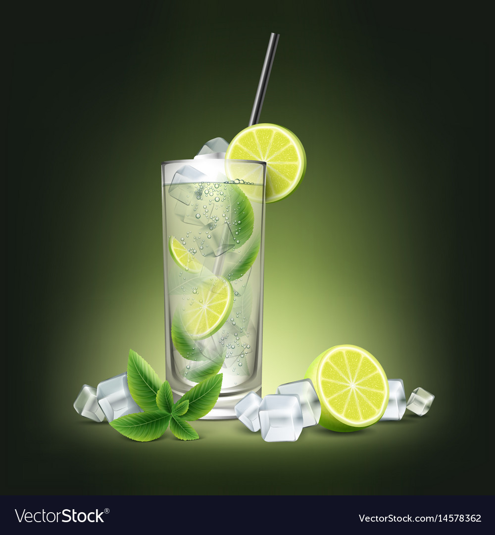 Mojito cocktail with fresh sliced lime vector image