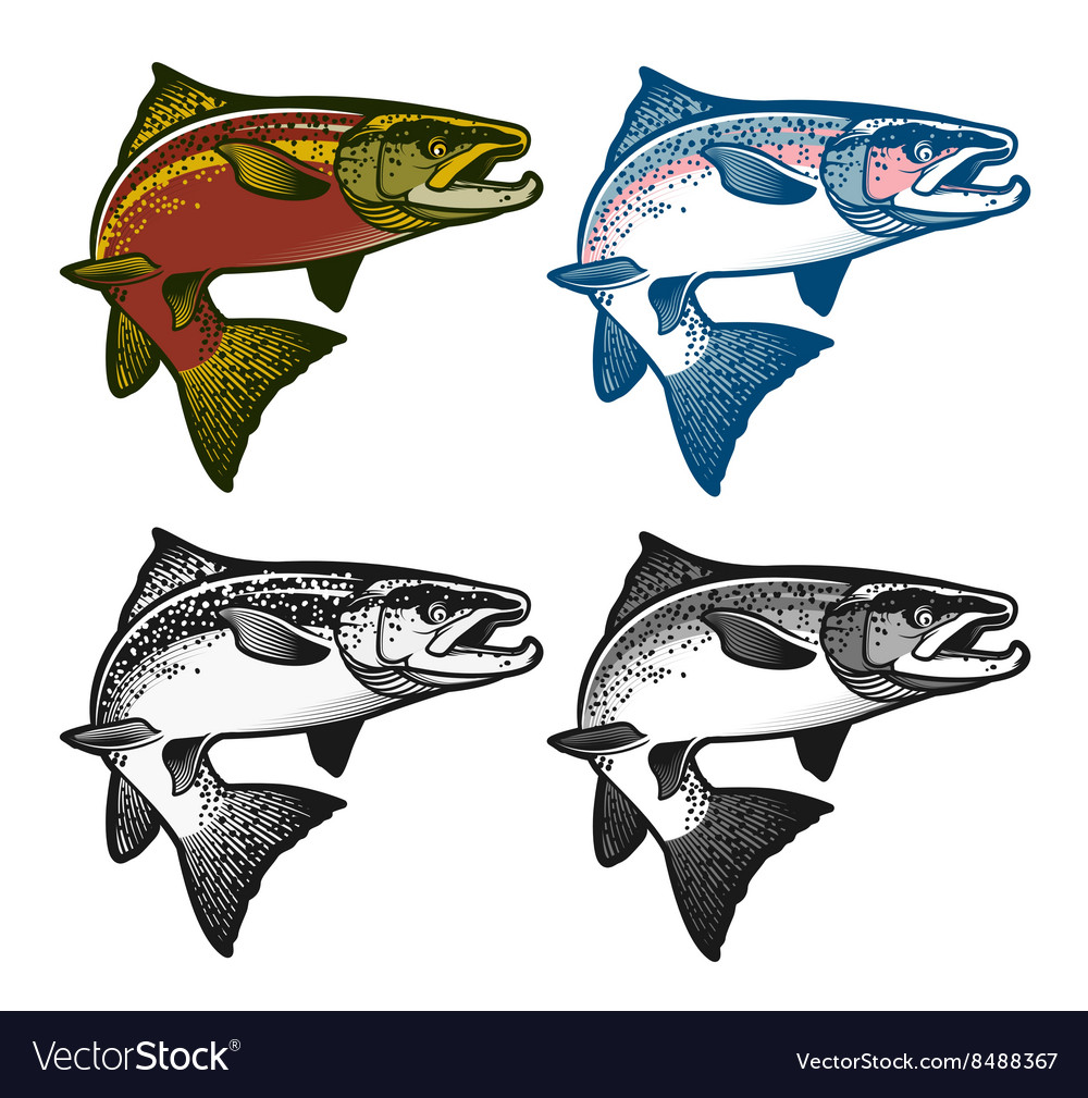 Fishing emblems labels and design elements