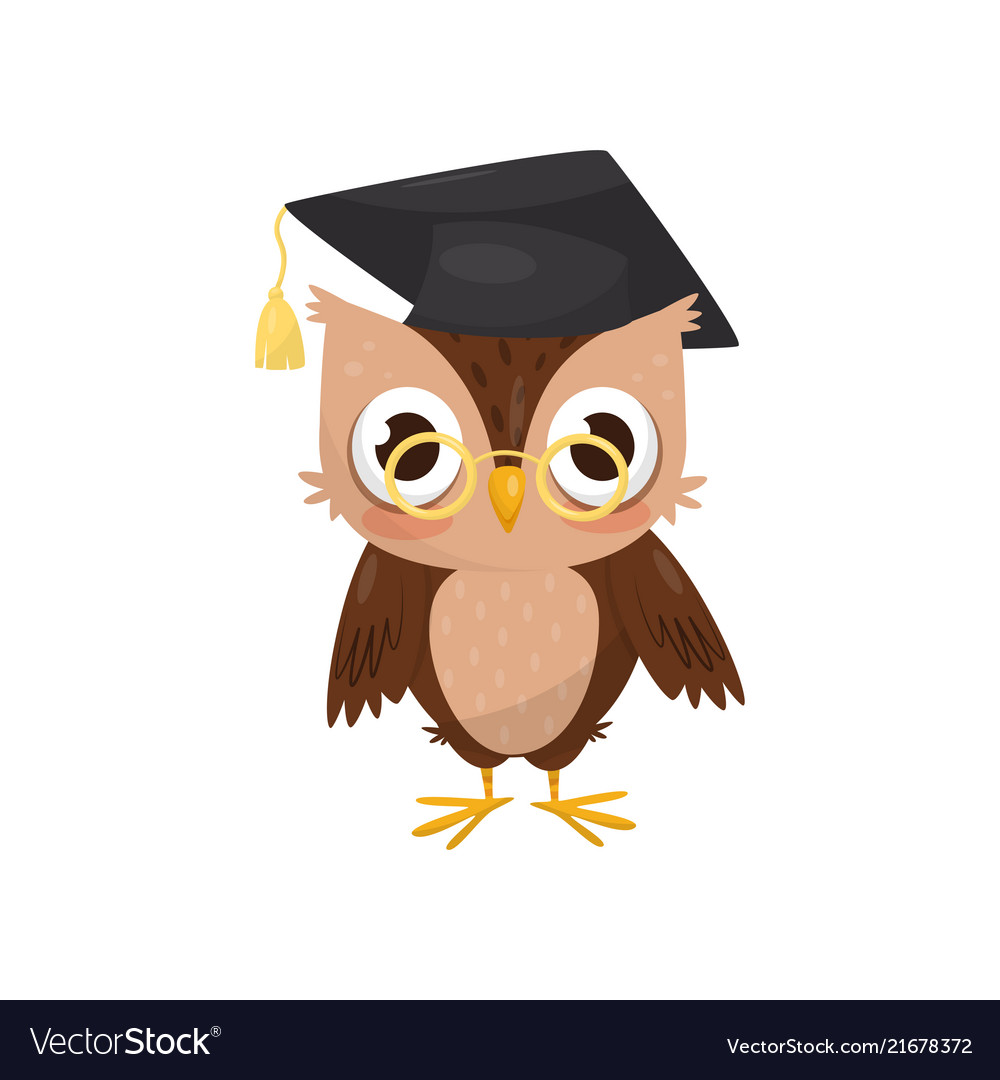 Lovely little owlet wearing graduation cap and