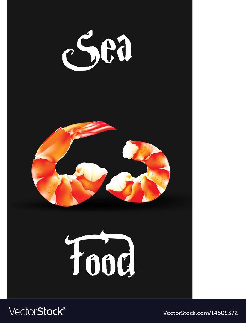Shrimp seafood design template prawn