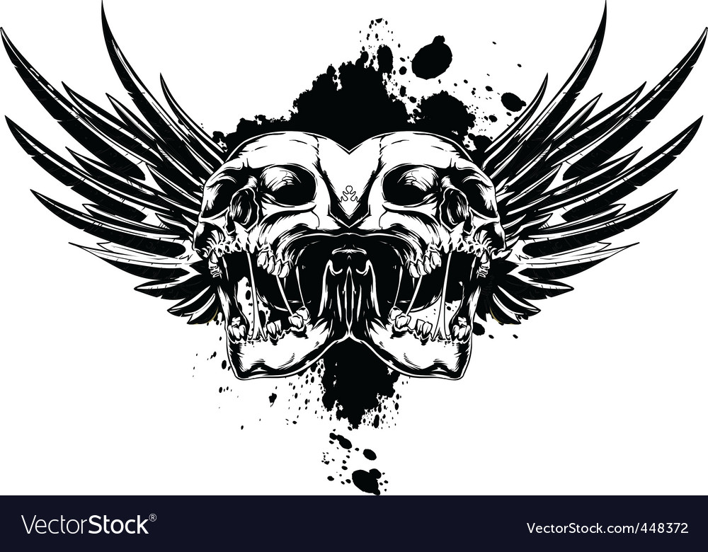Skull with wings and splashes vector image
