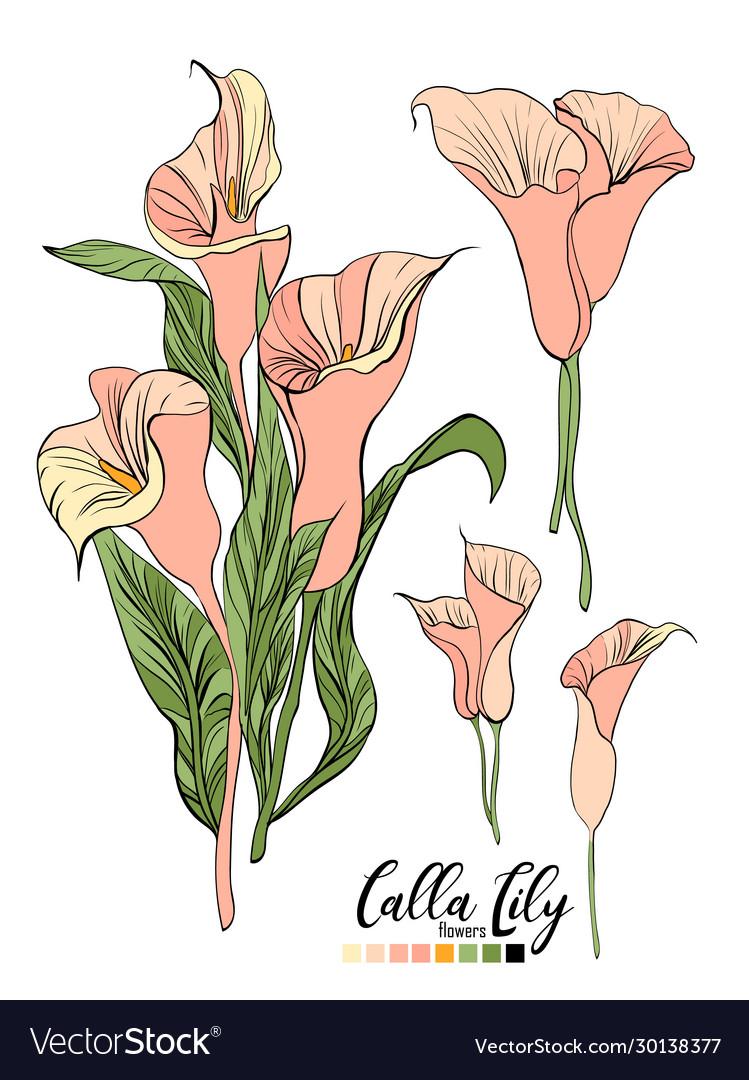 Floral bouquet design garden pink peach