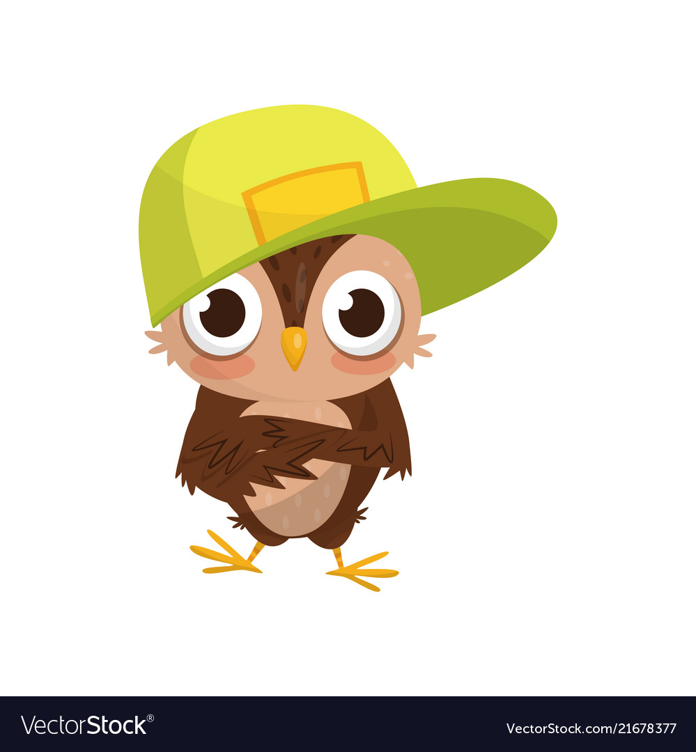 Lovely little owlet wearing baseball cap cute