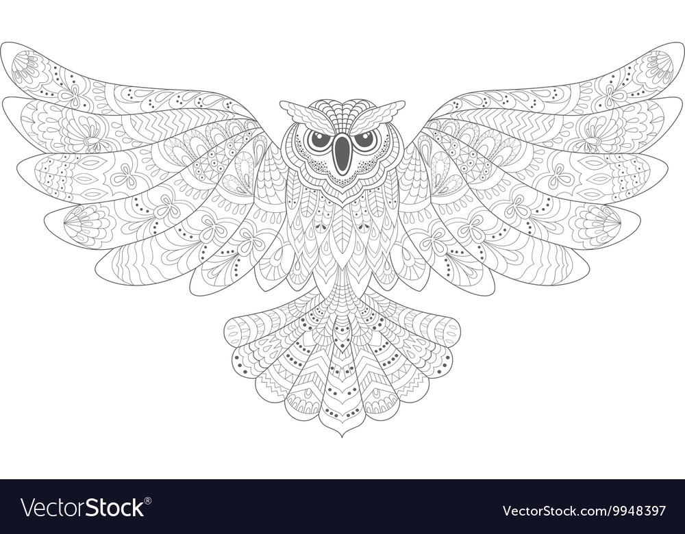 Stylized Decorative Owl Drawing for Coloring Book