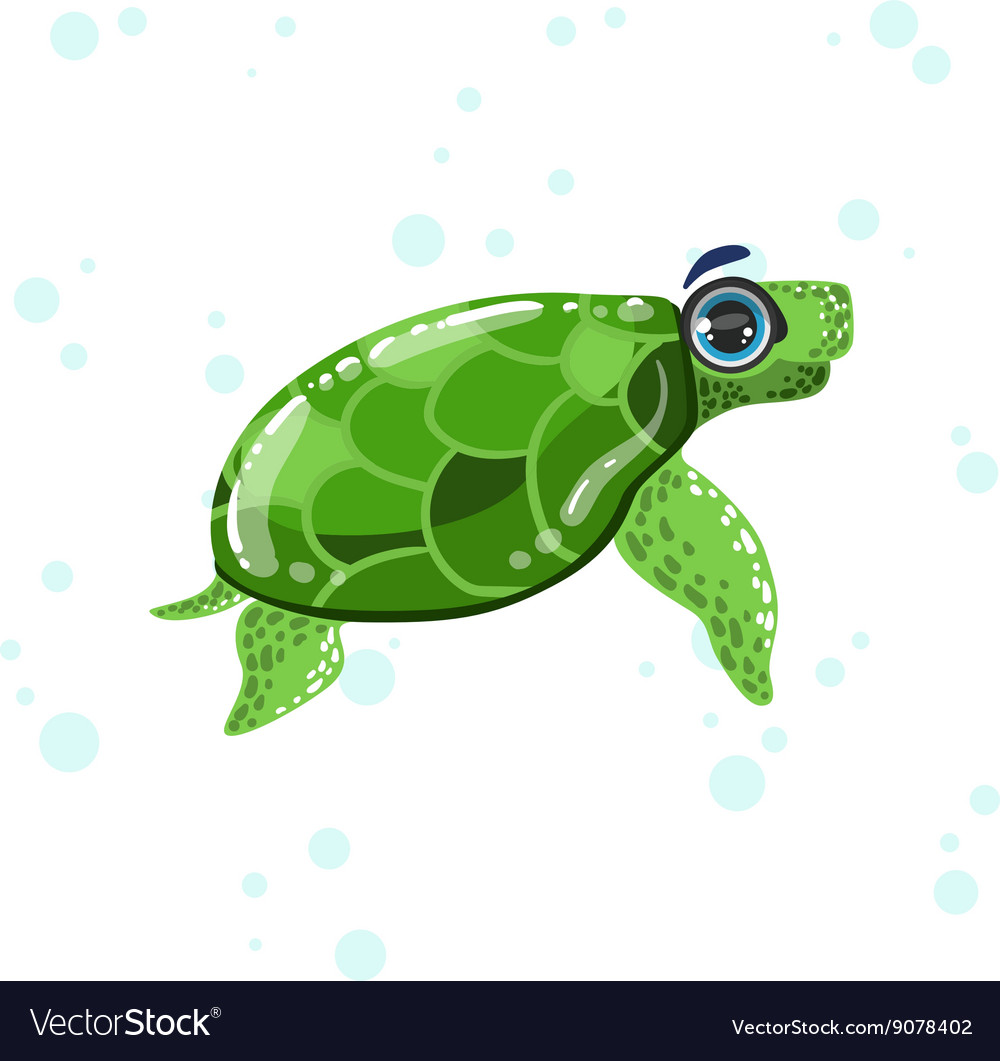 Green Turtle Drawing Royalty Free Vector Image