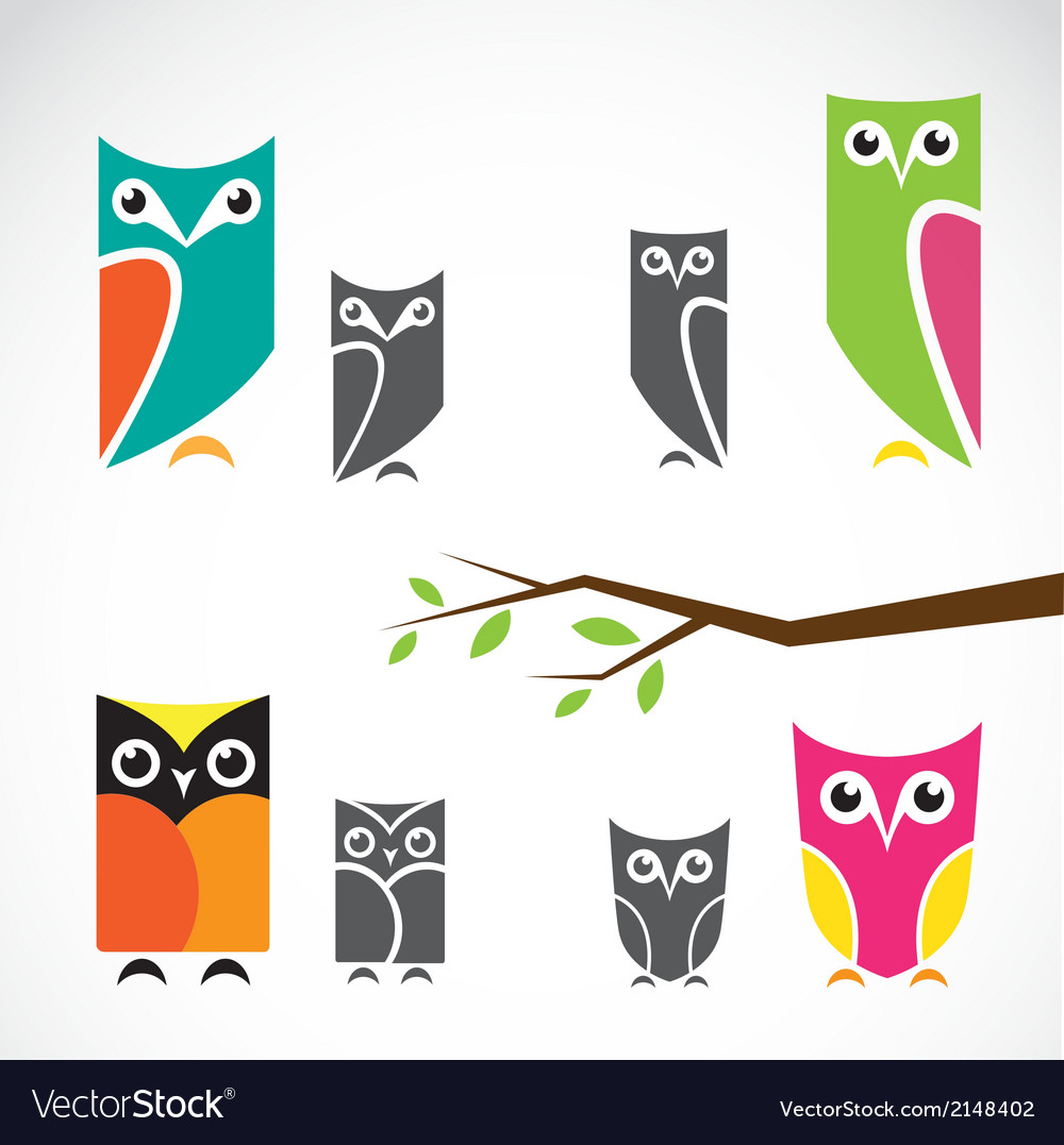 Group of owls and branch