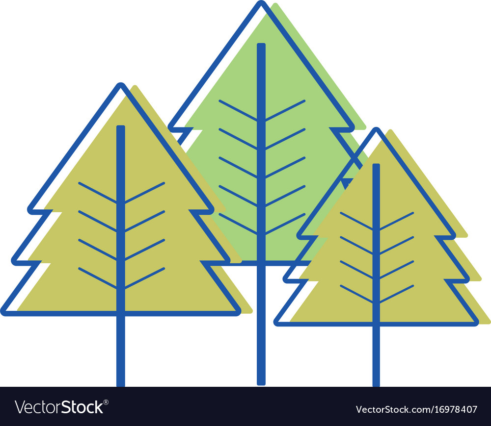 Beauty natural pine tree design